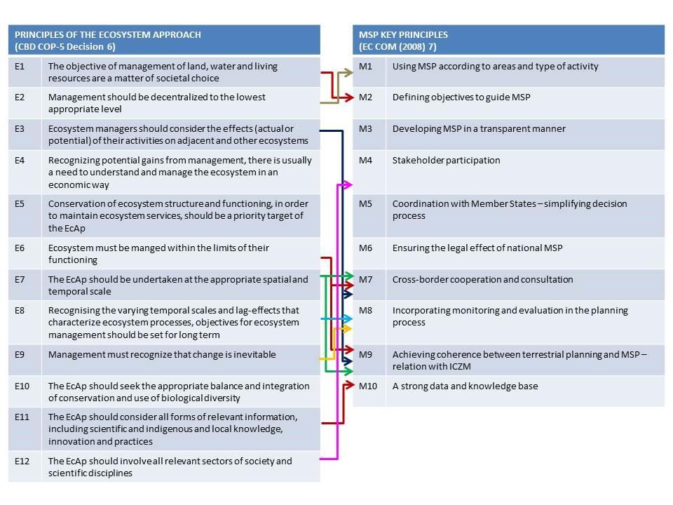 Figure 3. Links between EcAp and MSP principles (redrawn from Ramieri et al. 2014).